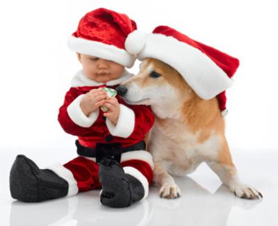 loi chuc giang sinh 2 18 lời chúc ấn tượng nhất trong ngày lễ Noel
